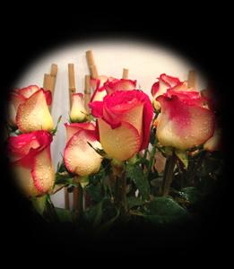 cod 113 -  Ramo rosas a elección